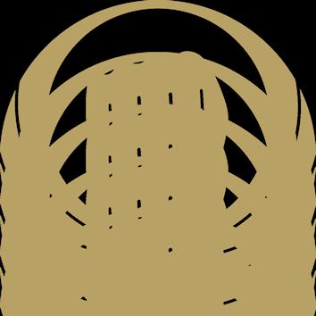 Wado Karate Federatie Nederland